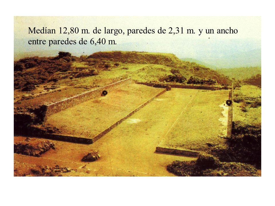 Medían 12,80 m. de largo, paredes de 2,31 m