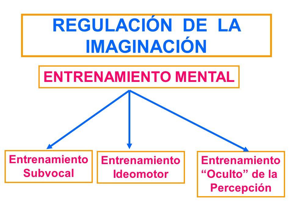 REGULACIÓN DE LA IMAGINACIÓN