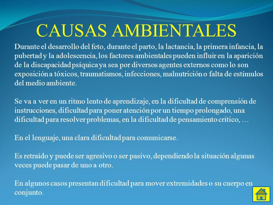 CAUSAS AMBIENTALES