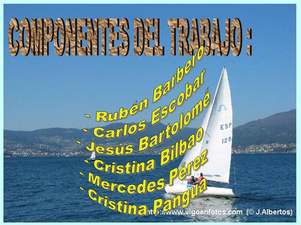 COMPONENTES DEL TRABAJO :