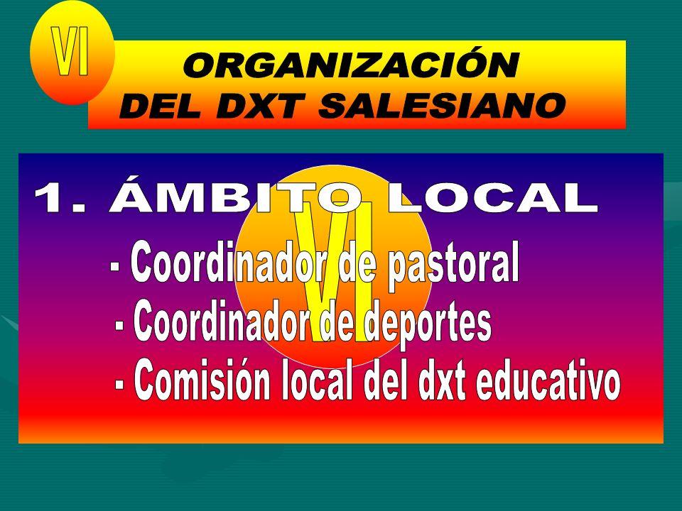 ORGANIZACIÓN DEL DXT SALESIANO VI 1. ÁMBITO LOCAL VI
