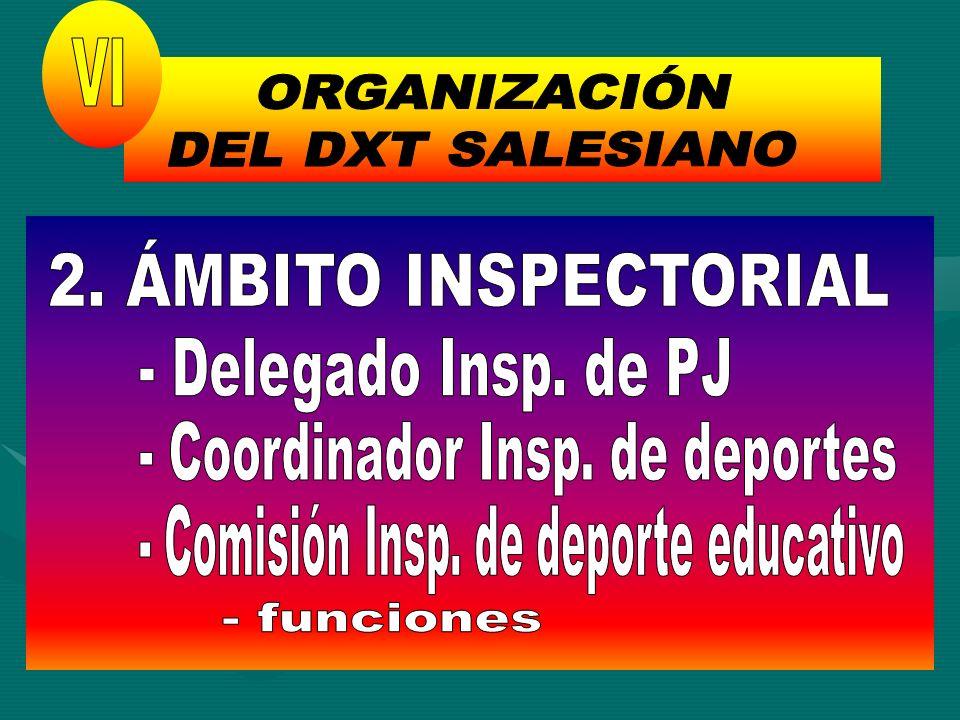 ORGANIZACIÓN DEL DXT SALESIANO VI 2. ÁMBITO INSPECTORIAL