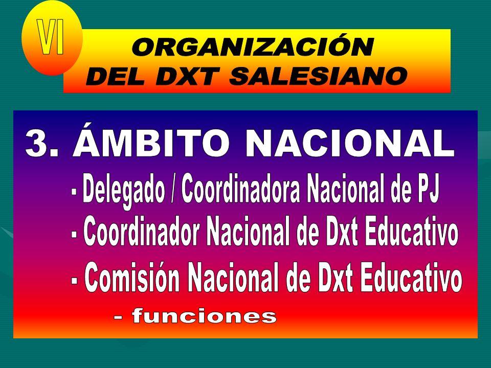 ORGANIZACIÓN DEL DXT SALESIANO VI 3. ÁMBITO NACIONAL