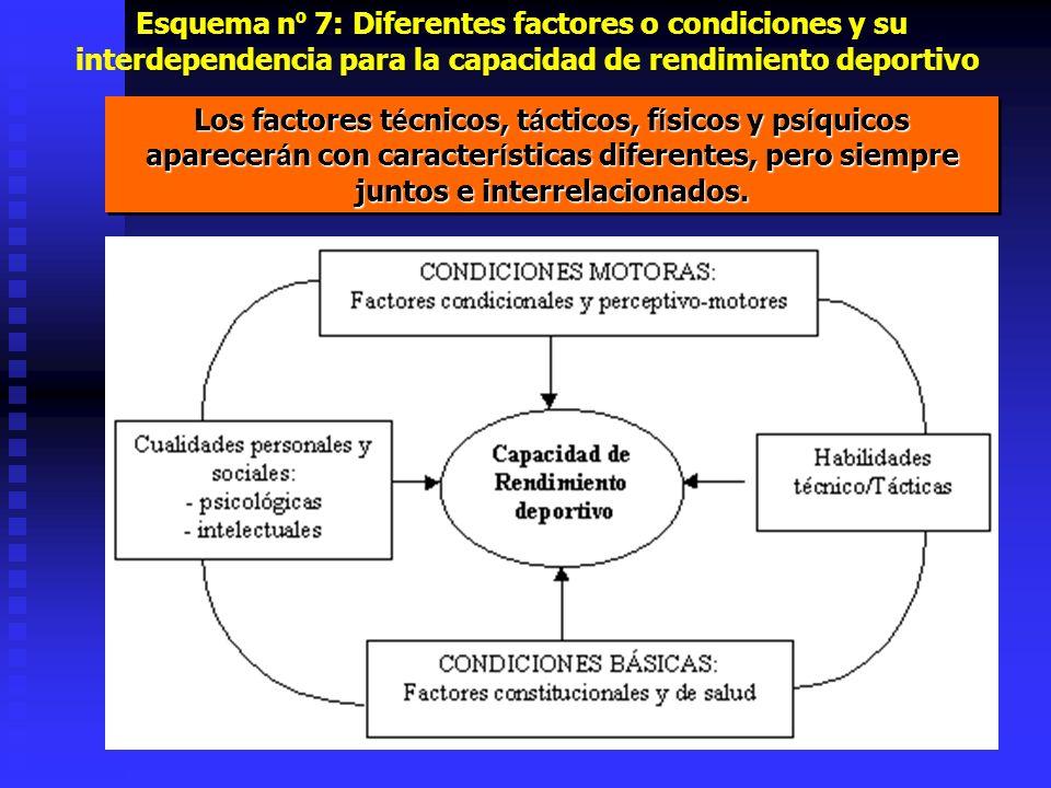 Esquema nº 7: Diferentes factores o condiciones y su interdependencia para la capacidad de rendimiento deportivo