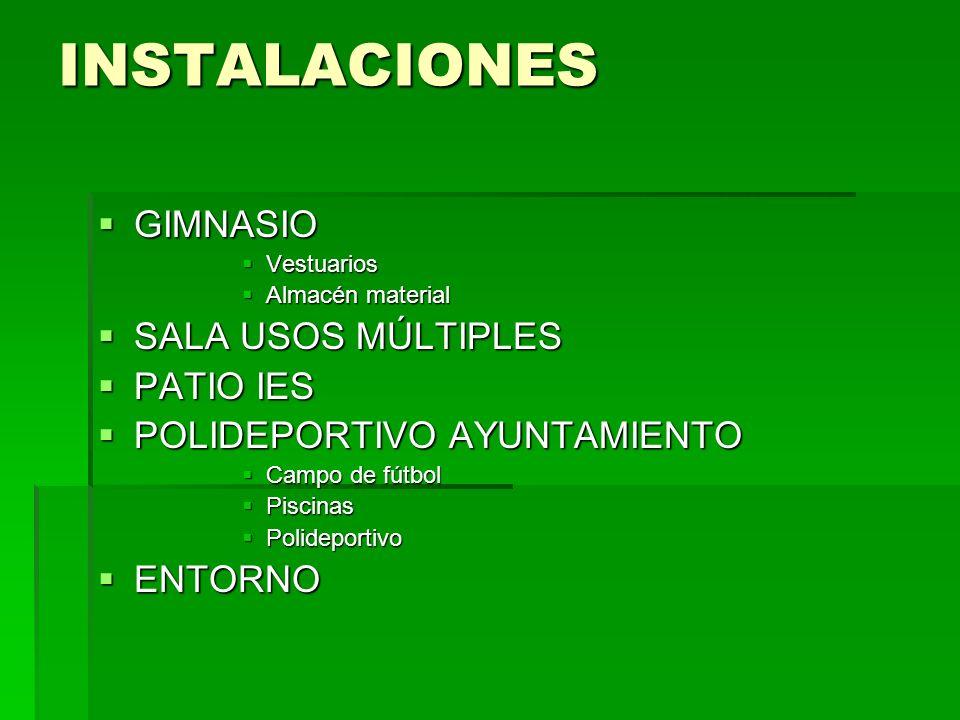 INSTALACIONES GIMNASIO SALA USOS MÚLTIPLES PATIO IES
