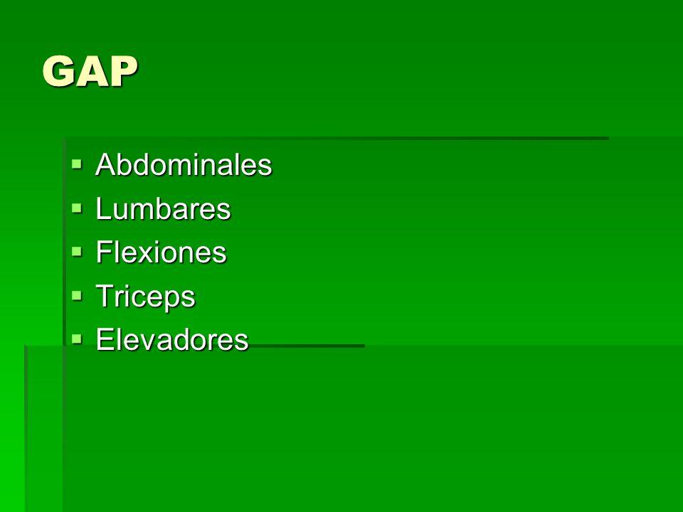 GAP Abdominales Lumbares Flexiones Triceps Elevadores