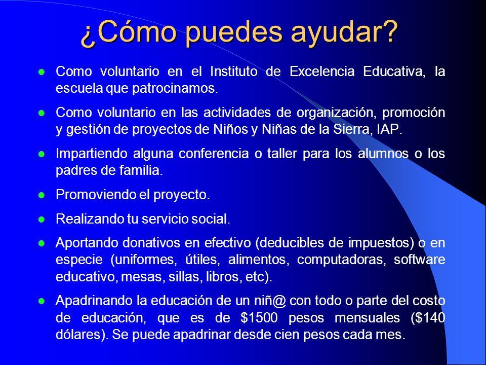 ¿Cómo puedes ayudar Como voluntario en el Instituto de Excelencia Educativa, la escuela que patrocinamos.
