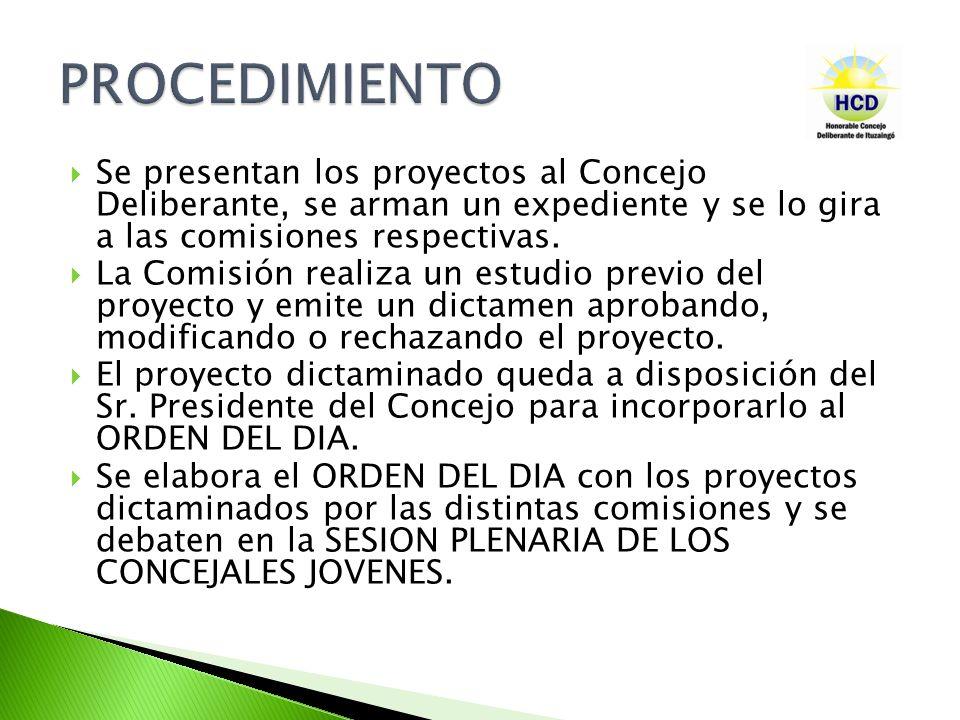 PROCEDIMIENTO Se presentan los proyectos al Concejo Deliberante, se arman un expediente y se lo gira a las comisiones respectivas.