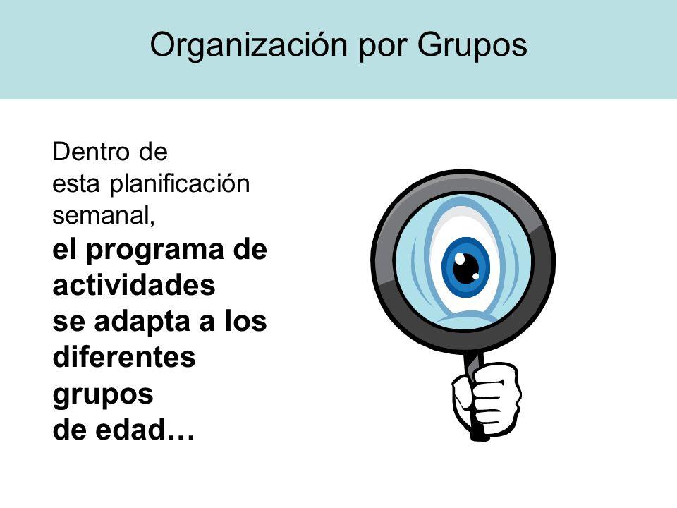 Organización por Grupos