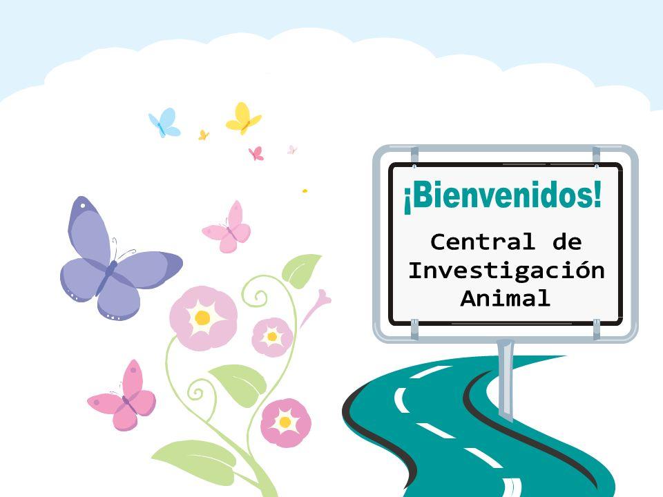 Central de Investigación Animal ¡Bienvenidos!