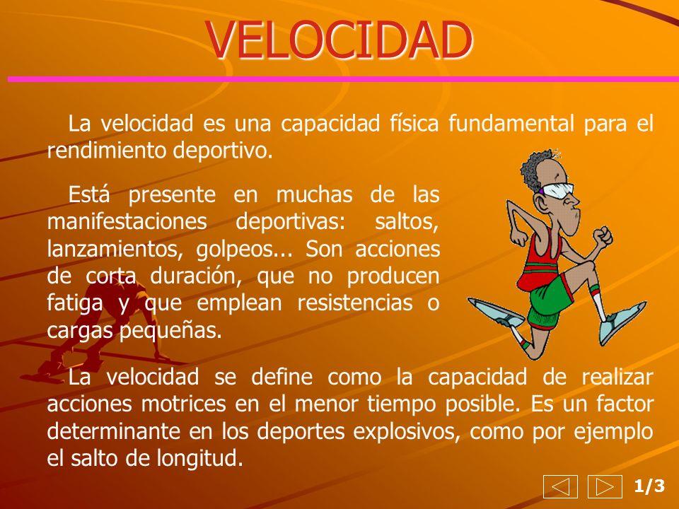 VELOCIDAD La velocidad es una capacidad física fundamental para el rendimiento deportivo.