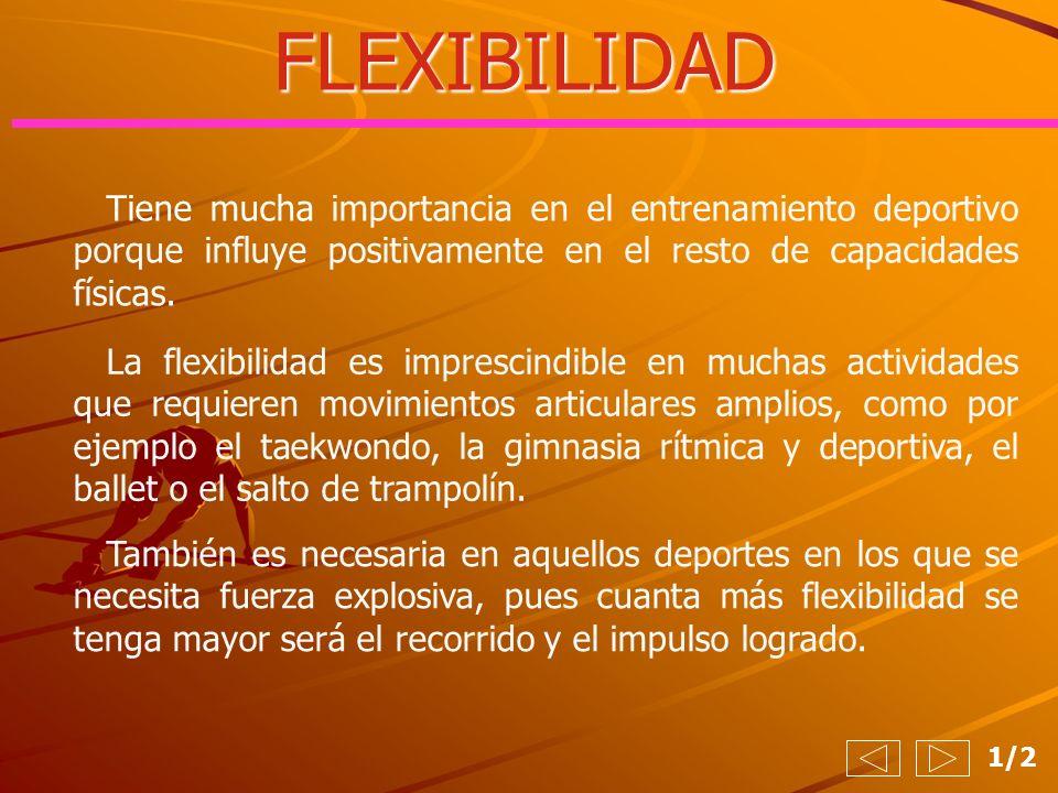 FLEXIBILIDAD Tiene mucha importancia en el entrenamiento deportivo porque influye positivamente en el resto de capacidades físicas.
