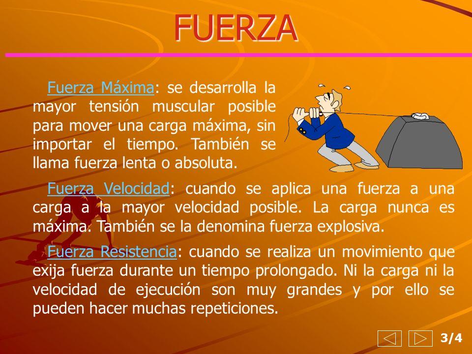 FUERZA