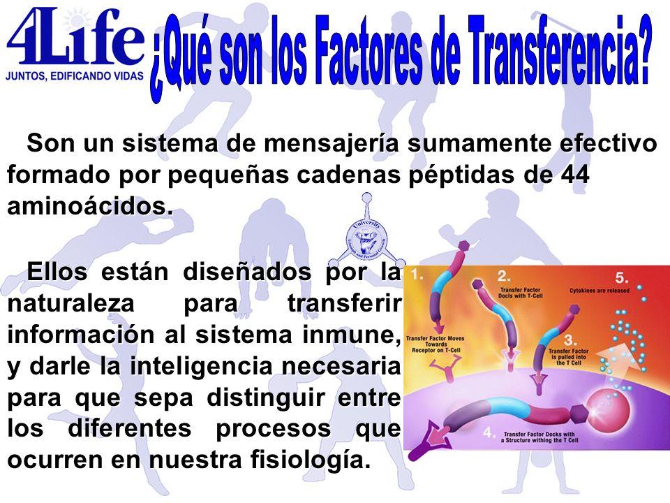 ¿Qué son los Factores de Transferencia