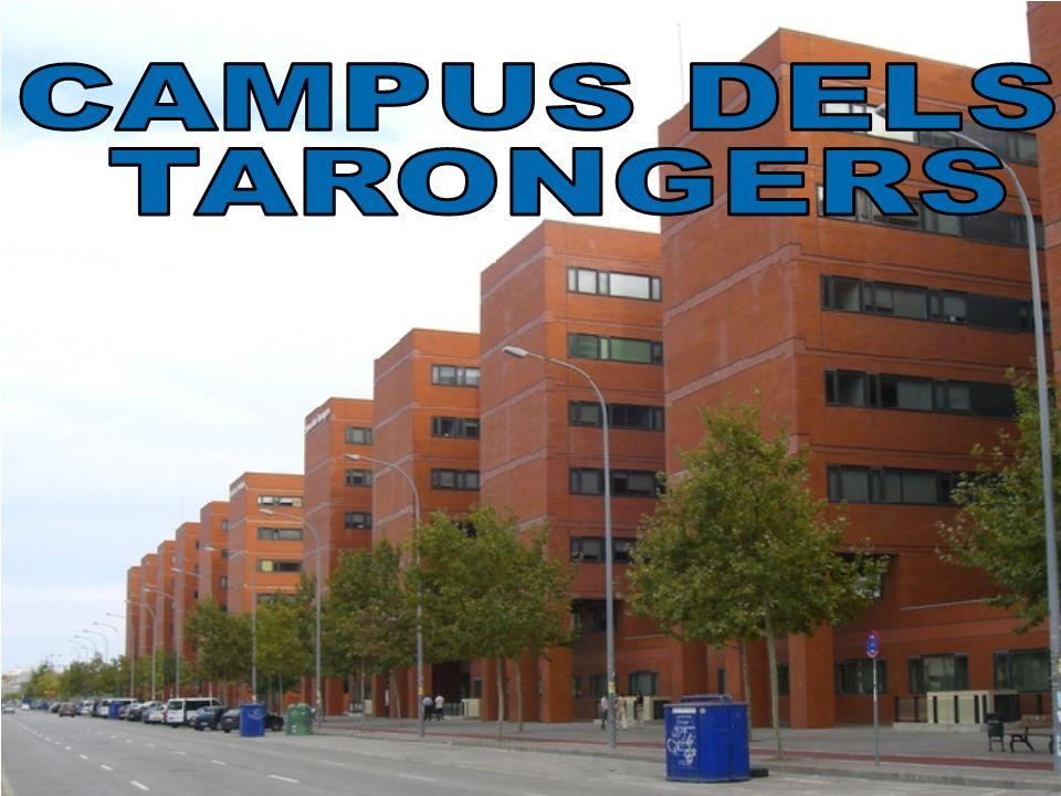 CAMPUS DELS TARONGERS
