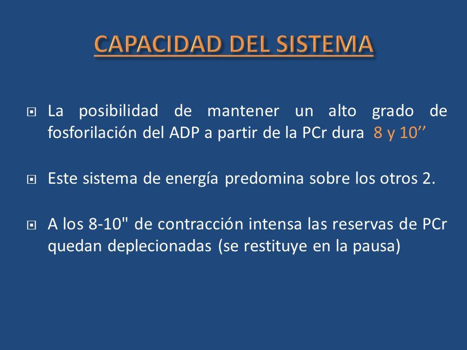CAPACIDAD DEL SISTEMA La posibilidad de mantener un alto grado de fosforilación del ADP a partir de la PCr dura 8 y 10''