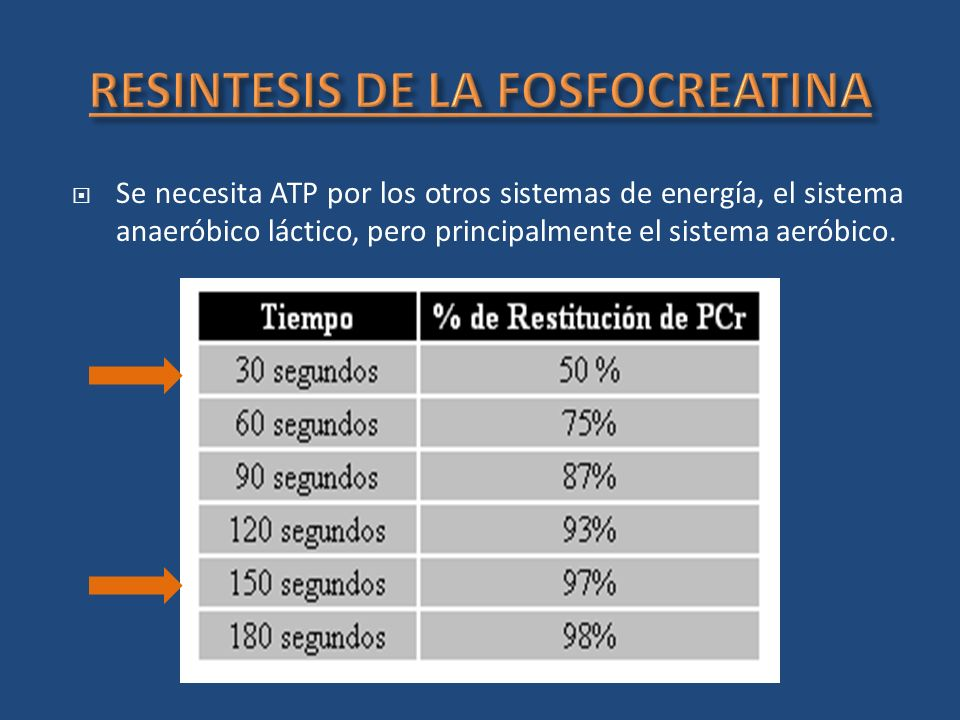 RESINTESIS DE LA FOSFOCREATINA