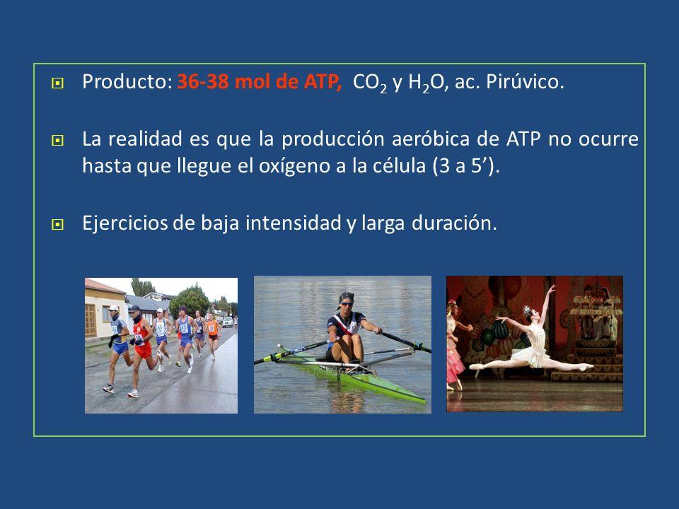 Producto: 36-38 mol de ATP, CO2 y H2O, ac. Pirúvico.