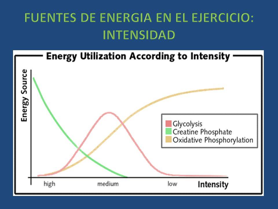 FUENTES DE ENERGIA EN EL EJERCICIO: INTENSIDAD