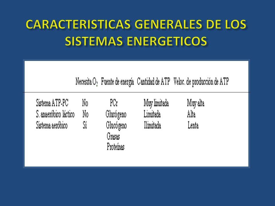 CARACTERISTICAS GENERALES DE LOS SISTEMAS ENERGETICOS