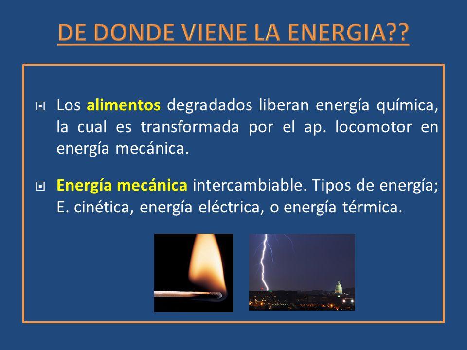 DE DONDE VIENE LA ENERGIA