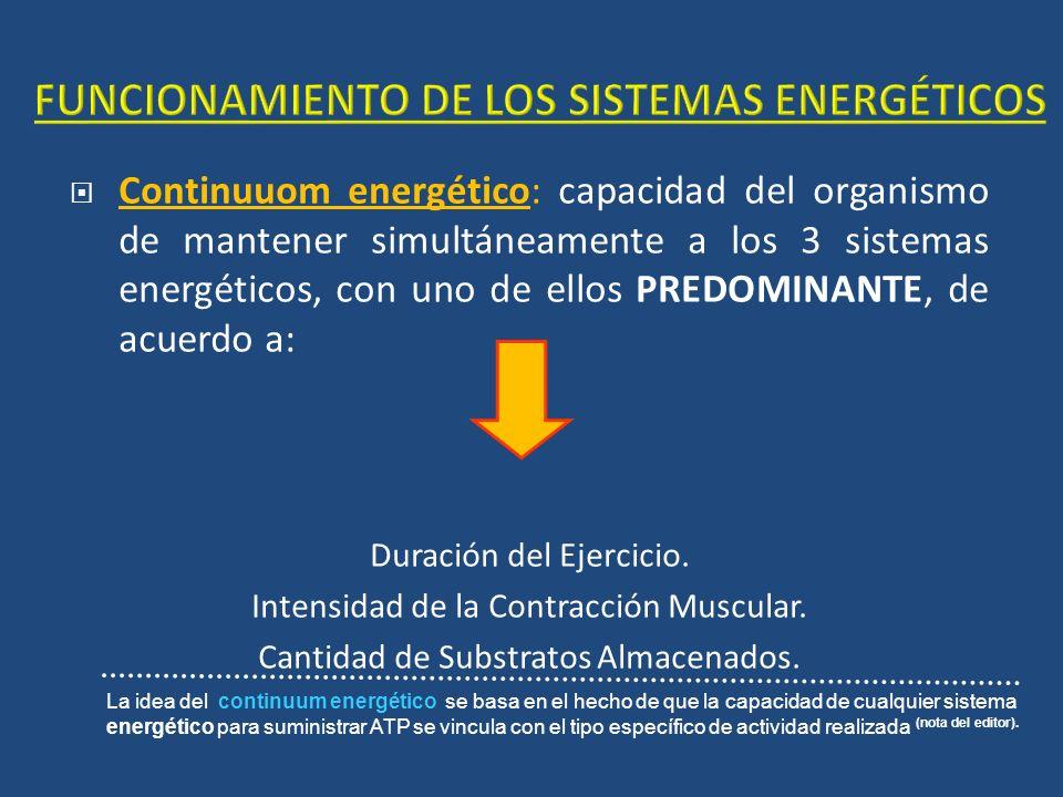 FUNCIONAMIENTO DE LOS SISTEMAS ENERGÉTICOS