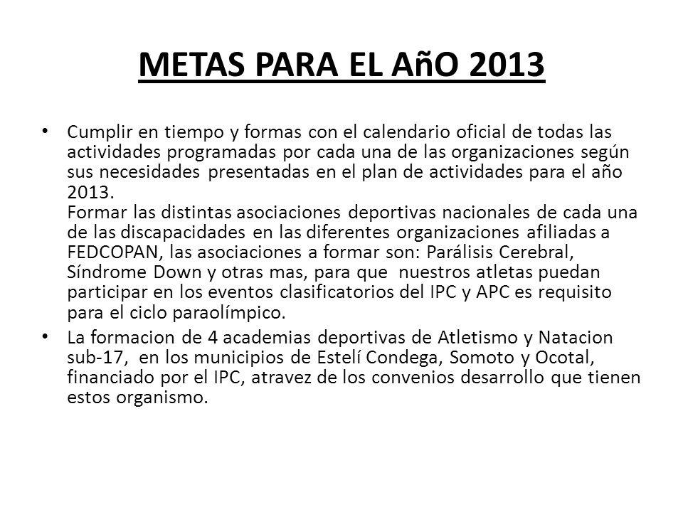 METAS PARA EL AñO 2013