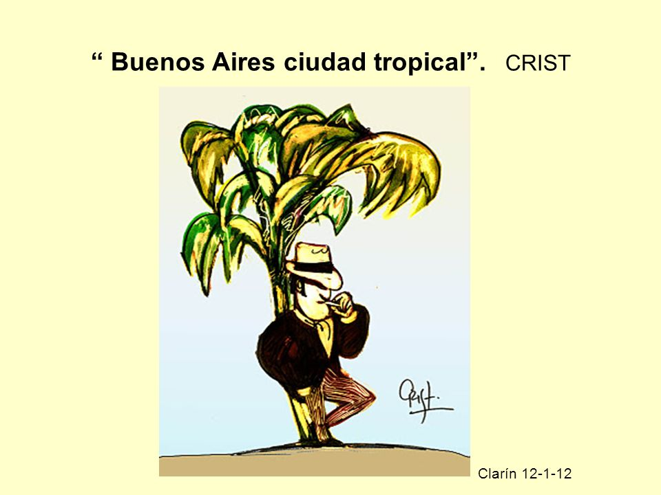 Buenos Aires ciudad tropical . CRIST