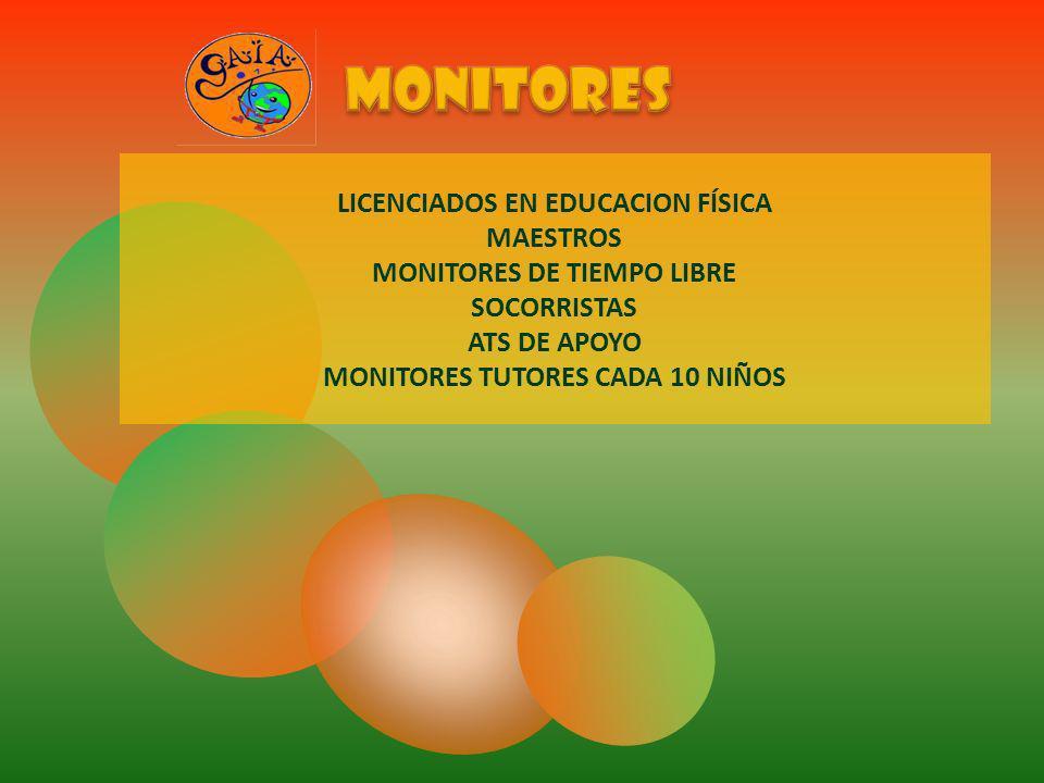 monitores LICENCIADOS EN EDUCACION FÍSICA MAESTROS