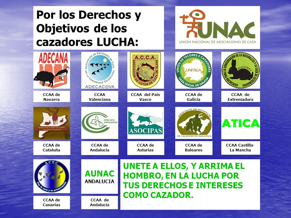 CCAA Castilla-La Mancha