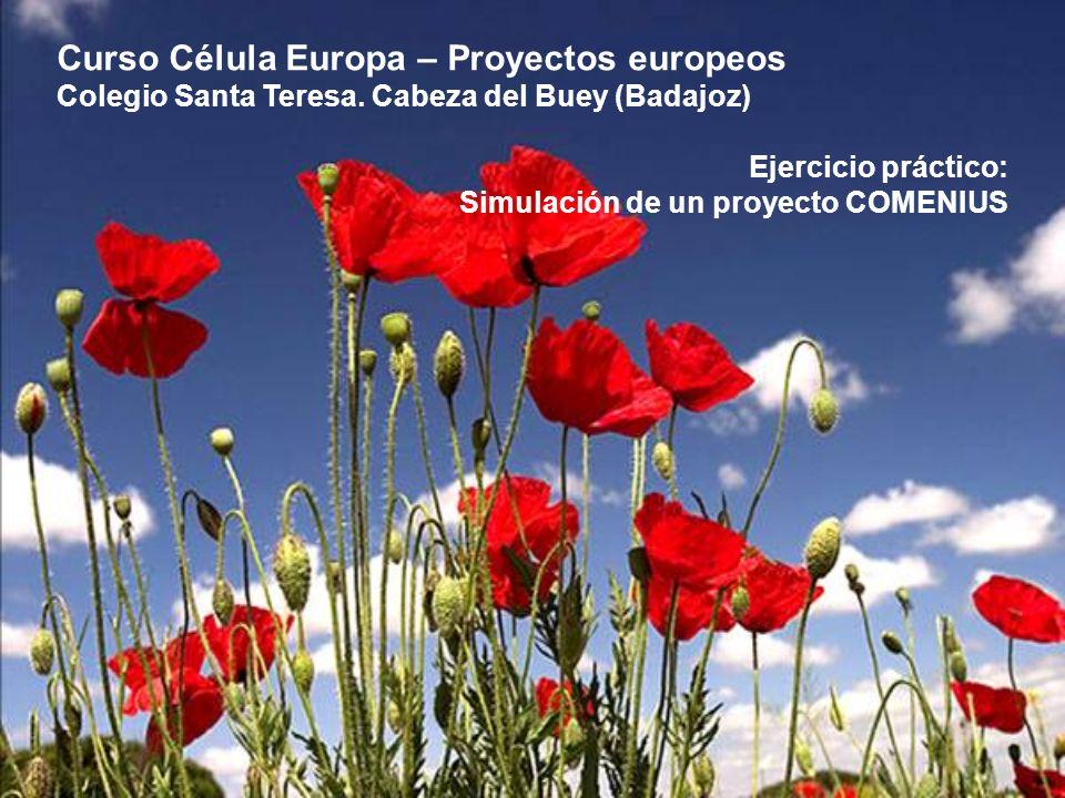 Curso Célula Europa – Proyectos europeos