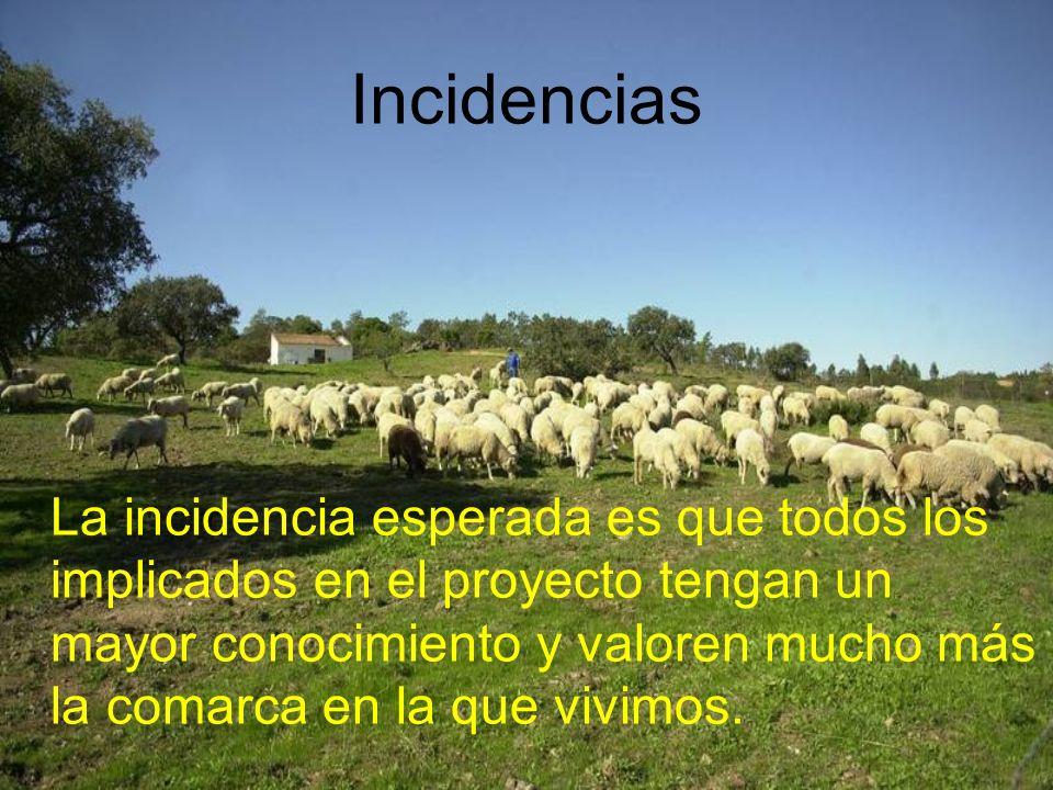 Incidencias
