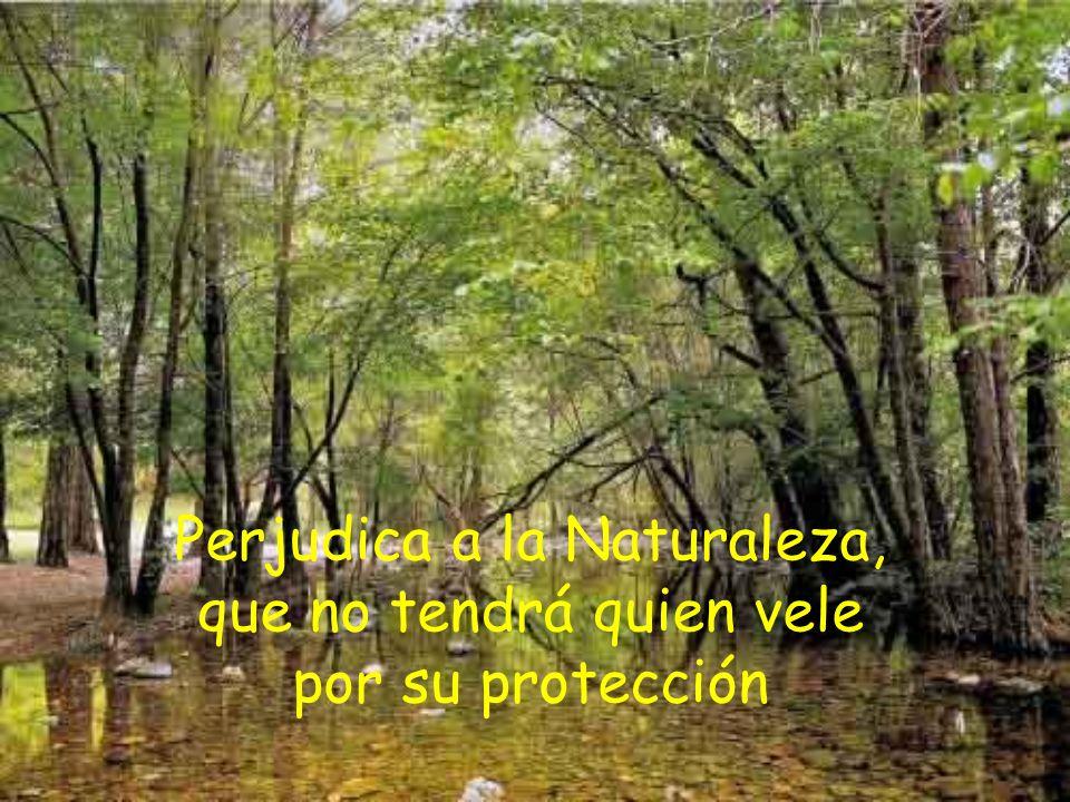 Perjudica a la Naturaleza, que no tendrá quien vele por su protección