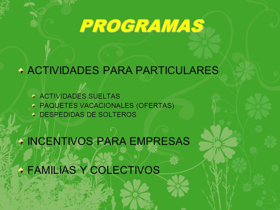 PROGRAMAS ACTIVIDADES PARA PARTICULARES INCENTIVOS PARA EMPRESAS