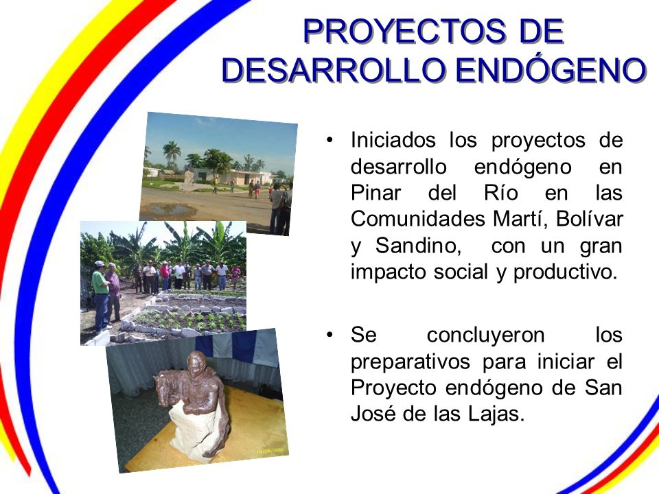 PROYECTOS DE DESARROLLO ENDÓGENO