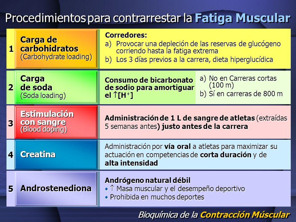 Procedimientos para contrarrestar la Fatiga Muscular