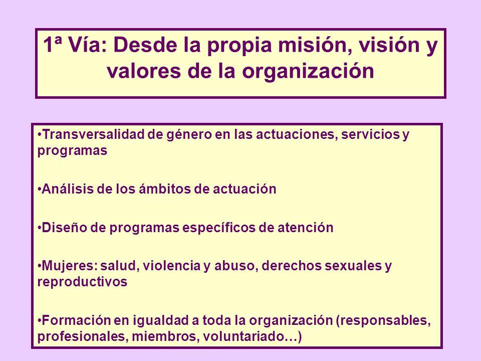 1ª Vía: Desde la propia misión, visión y valores de la organización