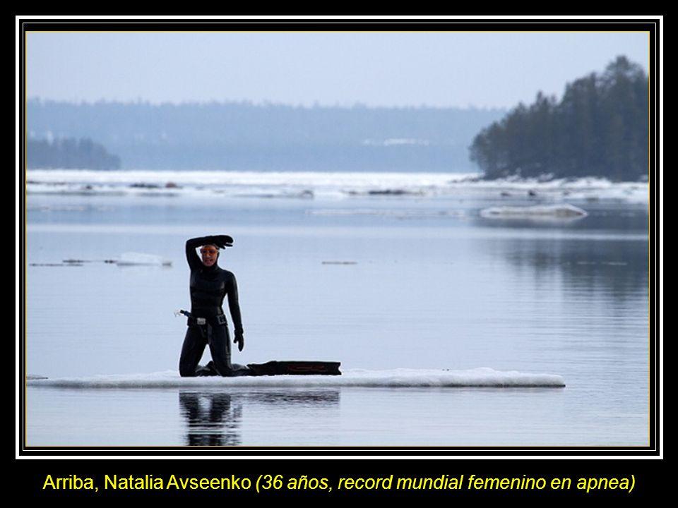 Arriba, Natalia Avseenko (36 años, record mundial femenino en apnea)