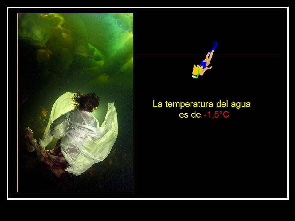 La temperatura del agua