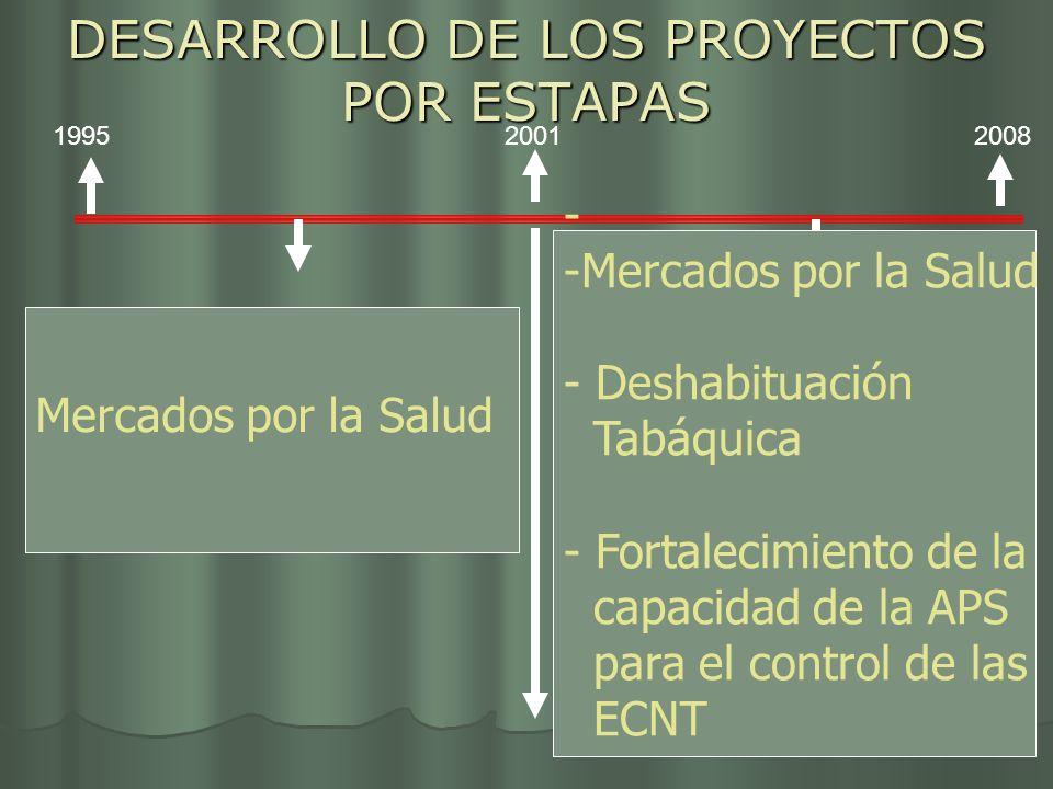 DESARROLLO DE LOS PROYECTOS POR ESTAPAS