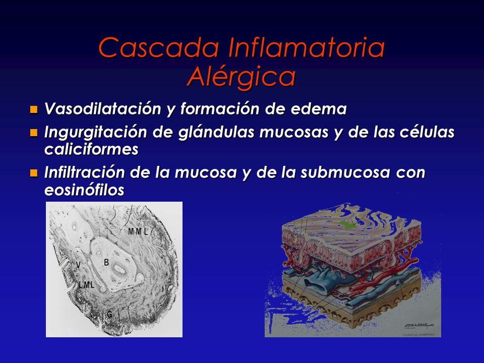 Cascada Inflamatoria Alérgica