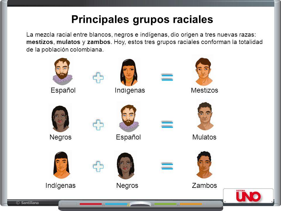 Principales grupos raciales