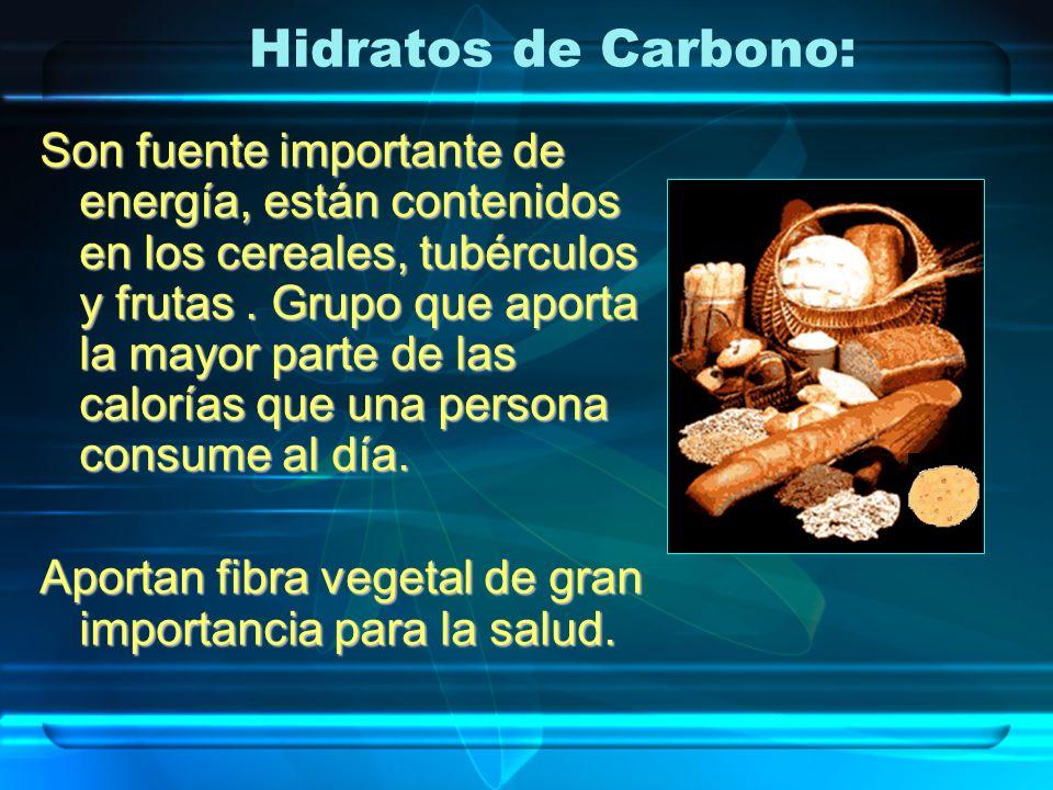 Hidratos de Carbono: