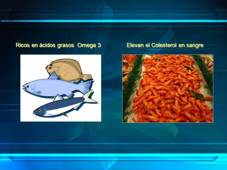 Ricos en ácidos grasos Omega 3