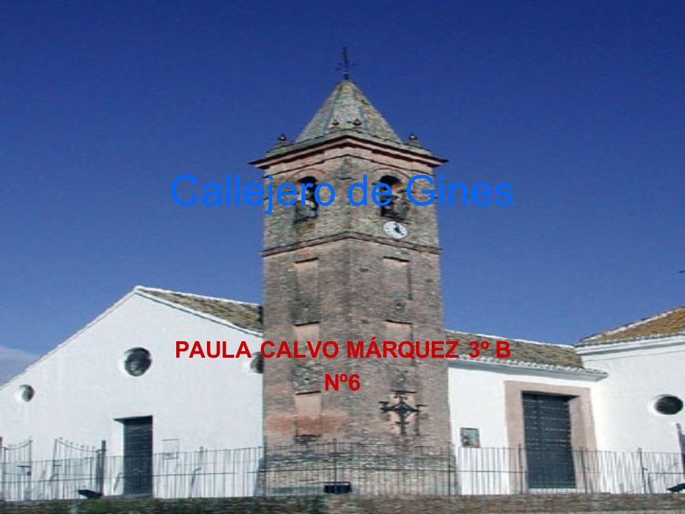 PAULA CALVO MÁRQUEZ 3º B Nº6