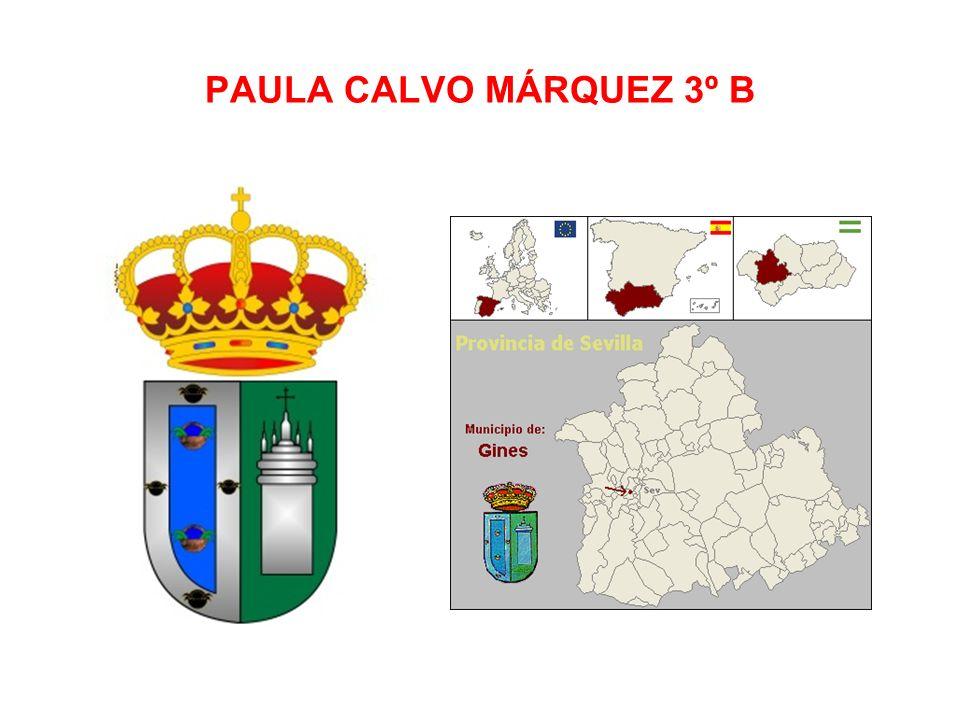 PAULA CALVO MÁRQUEZ 3º B