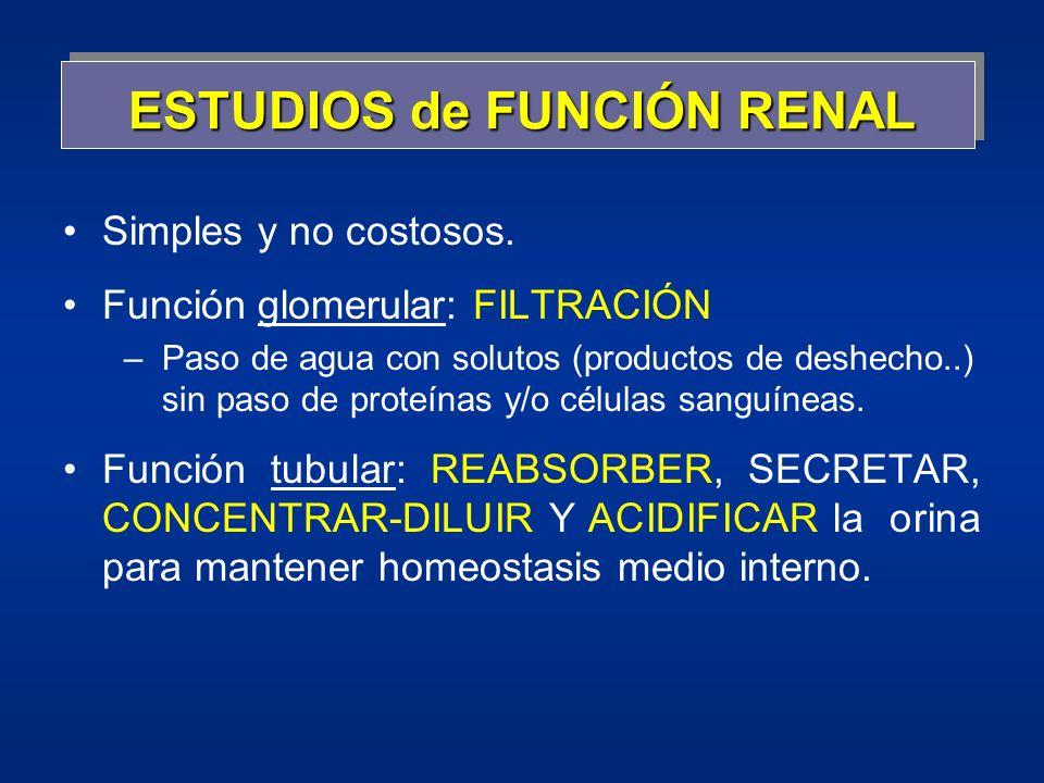 ESTUDIOS de FUNCIÓN RENAL