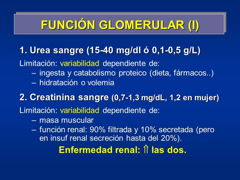 FUNCIÓN GLOMERULAR (I)