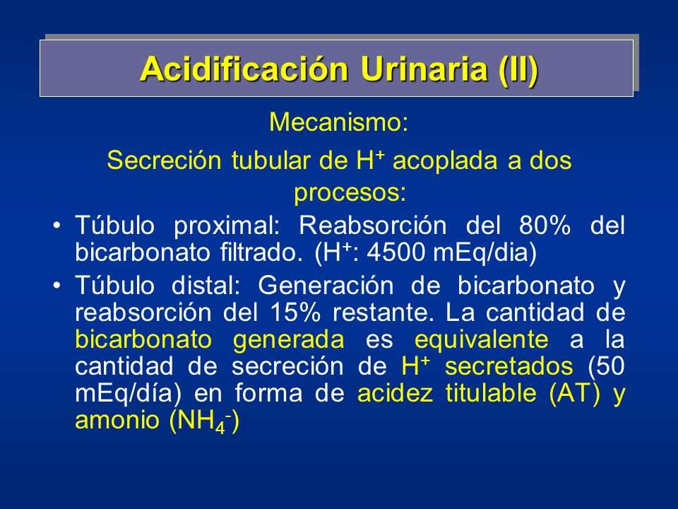 Acidificación Urinaria (II)