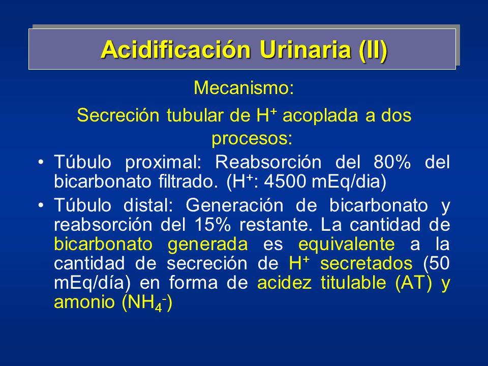 Acidificación Urinaria (II)